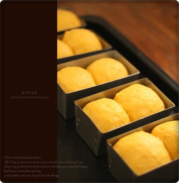 かぼちゃパンとドルマン_d0173942_139197.jpg