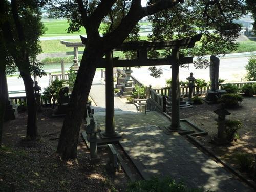 若八幡神社(3)夏羽と田油津姫は_c0222861_194963.jpg