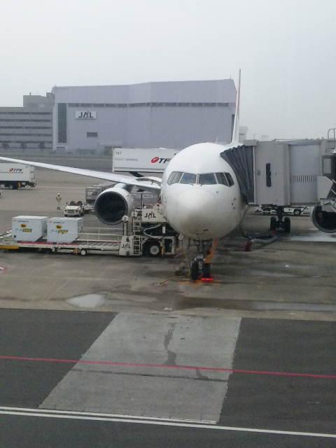 今から、飛行機にのります。_a0072505_10572349.jpg