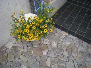 「和田の家」へ_b0179213_17581168.jpg