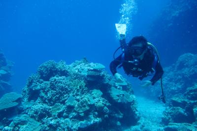 最近の水納島はヤバイっす_b0158923_23115673.jpg