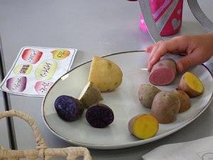 ジャガイモ食べくらべ教室_c0141652_18551285.jpg