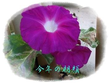 b0203273_945093.jpg