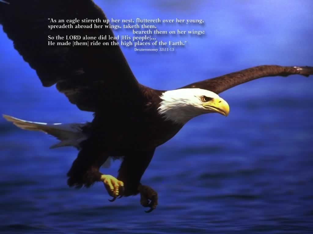 7月28日イザヤ13-15章『主の民を攻める者への宣告』_d0155777_852935.jpg