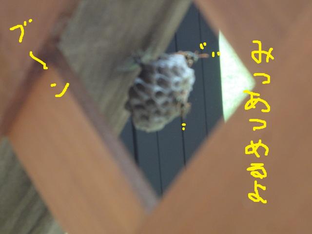 e0201009_2265485.jpg