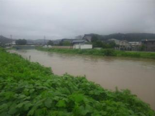 下条川が危なかった!_b0130512_1263231.jpg