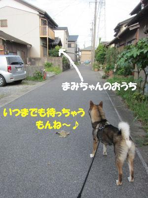 f0143123_202687.jpg