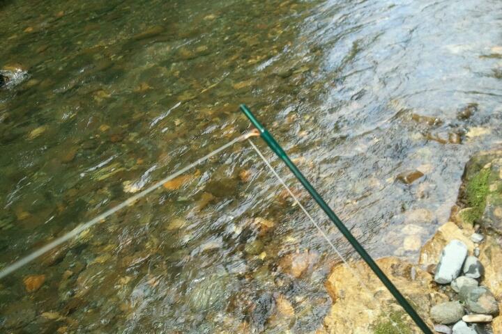 釣り楽しい!  ここ最近_e0173533_20135999.jpg