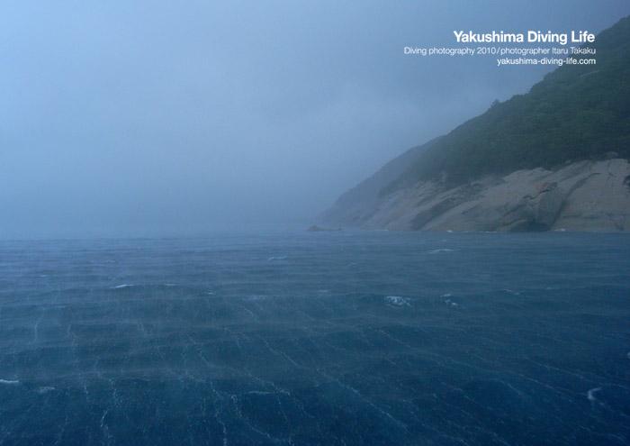 嵐だ~、でも海は最高!!_b0186442_22403317.jpg