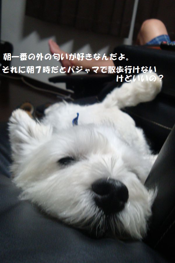b0214647_935162.jpg