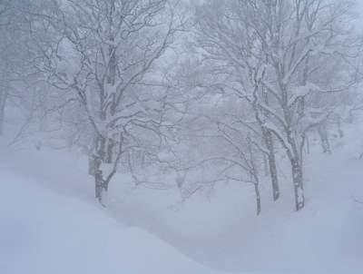 【滑走レポ24 2011.2.15】 初めての野沢♪@野沢温泉_e0037849_1747837.jpg