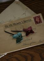 きれいな色の紫陽花とブリキのボックス_c0195883_17154216.jpg