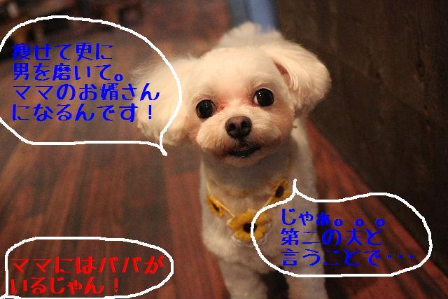 b0130018_9225923.jpg