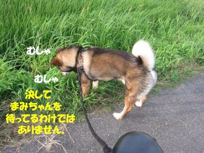 f0143123_2041230.jpg