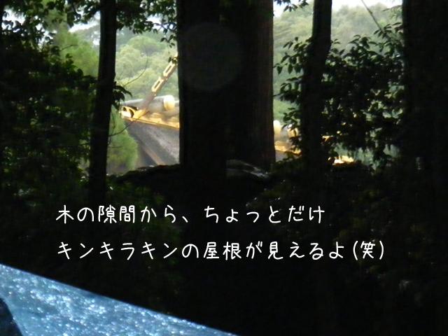 f0008935_1731889.jpg