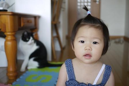 猫のお友だち ビンゴくん編。_a0143140_22425641.jpg