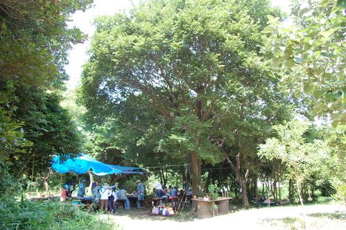 「うみべの森で竹工作…竹笛3種類 他」_c0108460_20465215.jpg