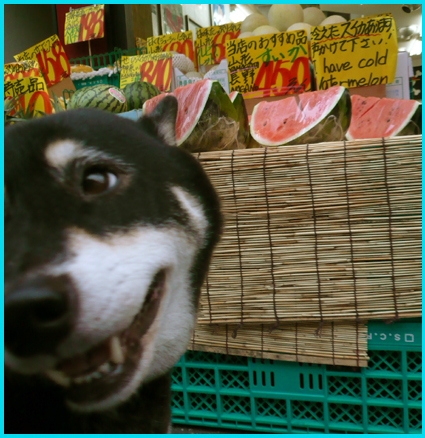 スイカ・ジェラートを、昭和レトロが残る広尾商店街へ。_e0236072_23293014.jpg