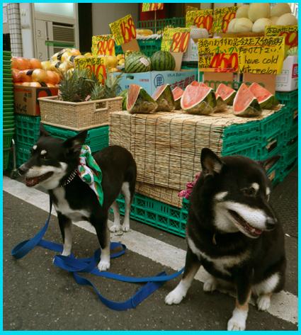 スイカ・ジェラートを、昭和レトロが残る広尾商店街へ。_e0236072_23341816.jpg