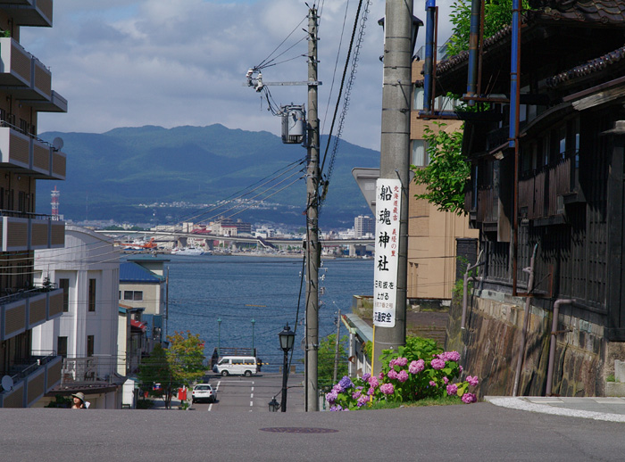 函館あじさい    正しい週末の過ごし方 その6_b0103798_530467.jpg