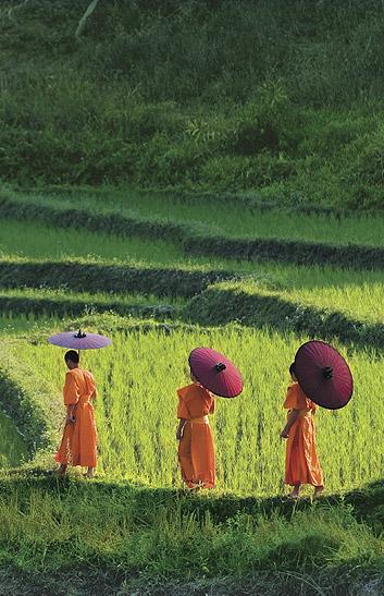 Chiangmai の夏休み_b0210699_2314514.jpg