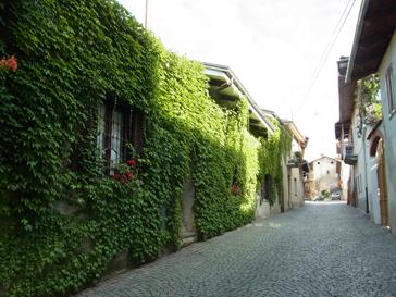 トリノから1泊旅行 ロマーノ カナヴェーゼ/Romano Canabese Torino_d0070113_2050239.jpg