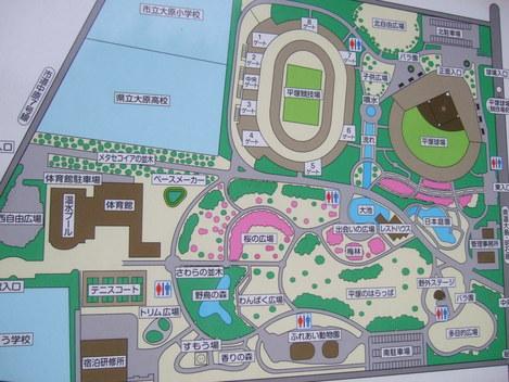 7月30日なでしこ...日テレ対伊賀...平塚競技場_b0137932_11541173.jpg