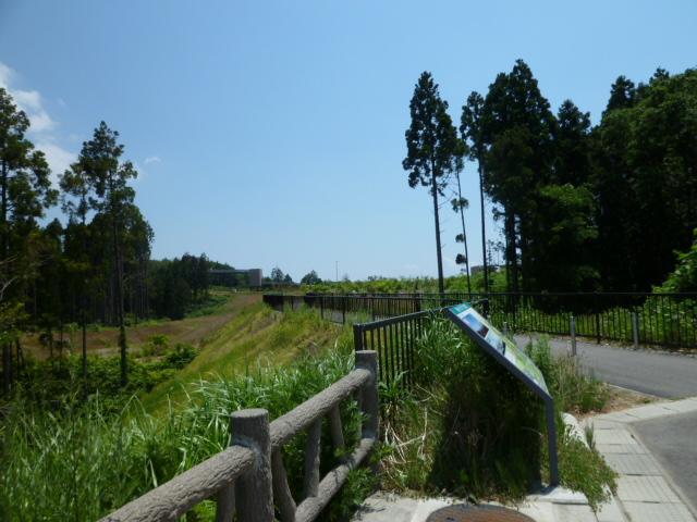 千枚田を見にいく_c0100865_161431.jpg