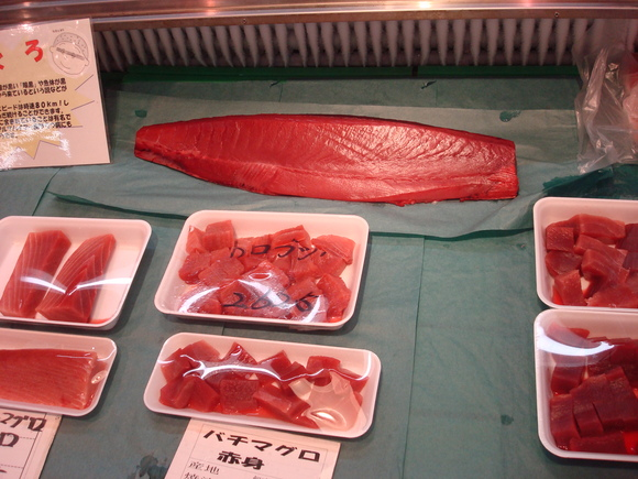 Fish Market in my town_a0186568_1718865.jpg
