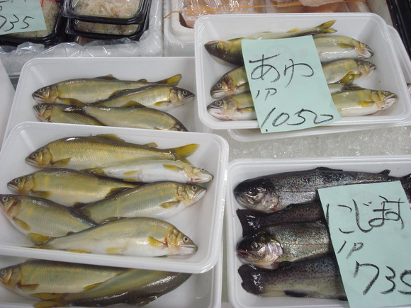 Fish Market in my town_a0186568_19322528.jpg