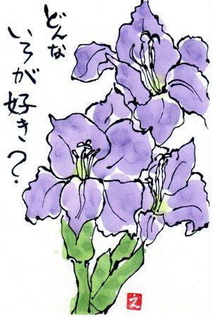 久しぶりの憩いの山_a0220570_012527.jpg