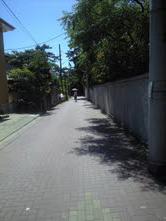 f0184191_141336.jpg