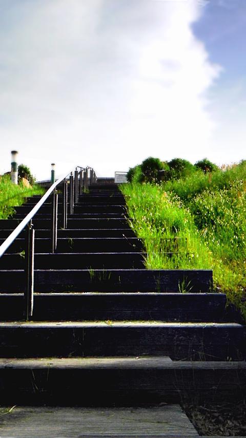 夏の階段_f0235201_1963981.jpg