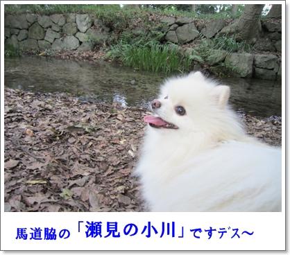 b0167519_1024334.jpg
