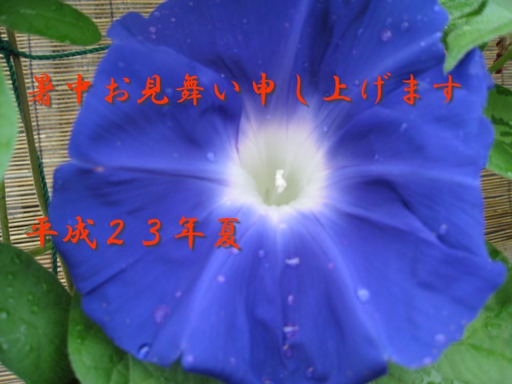c0197220_8404755.jpg