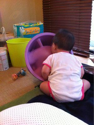 娘っ子記録8ヶ月_b0159731_082012.jpg