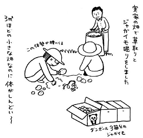 「biwamap」の坂木浩子さん登場!_c0039735_15174163.jpg