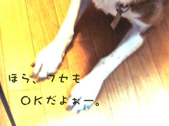 c0086746_17544893.jpg