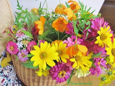 ◆山の花屋さん~。_a0122148_2204315.jpg