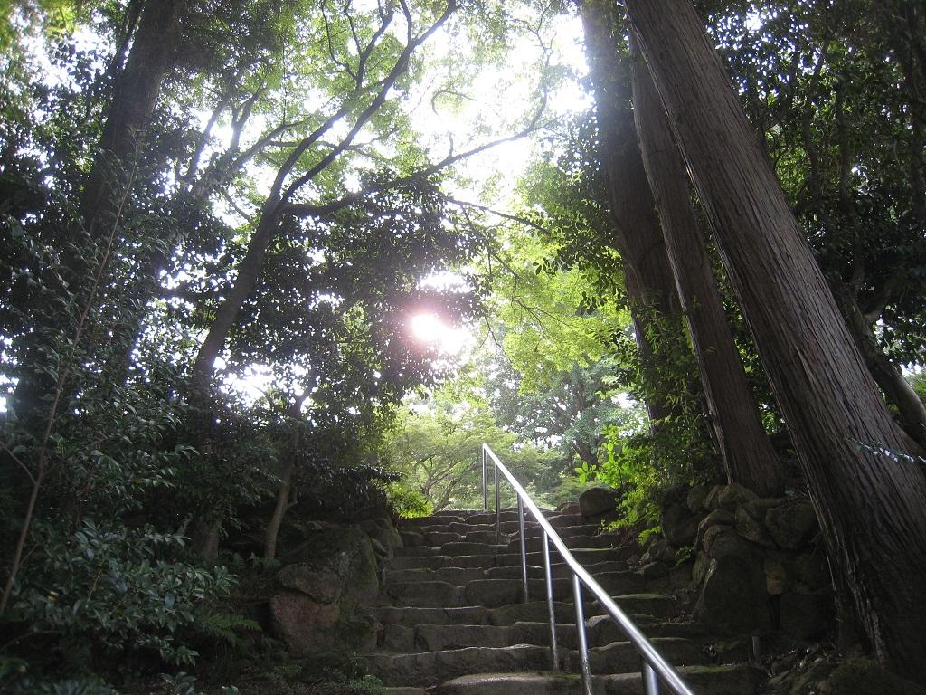 甲山・鷲林寺(ジュウリンジ)_f0205367_1957482.jpg
