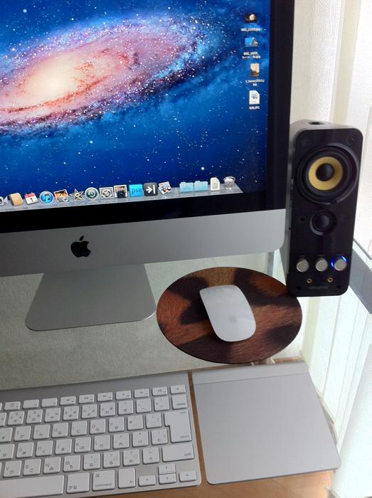 OS X Lion_e0139093_1628331.jpg