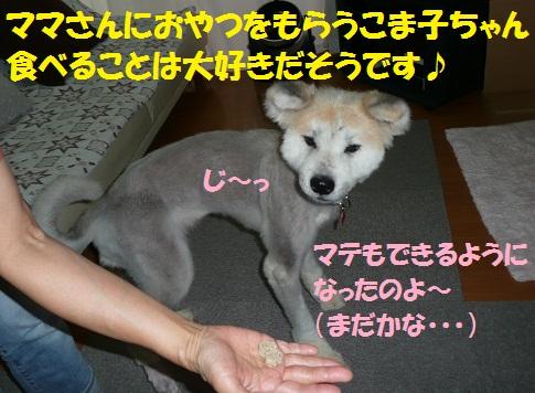 f0121712_2254711.jpg
