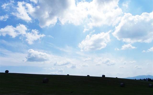 北海道自助旅行 (中)_d0187917_23495076.jpg