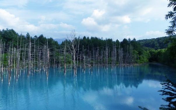 北海道自助旅行 (中)_d0187917_23585489.jpg