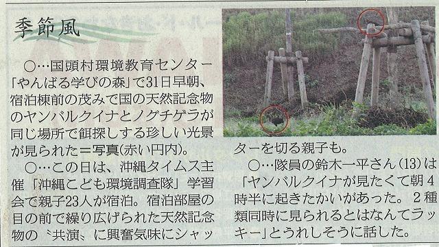 沖縄こども環境調査隊2日目_f0121321_1958489.jpg