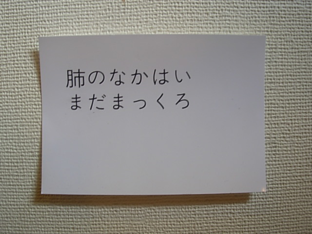 b0185330_12262241.jpg