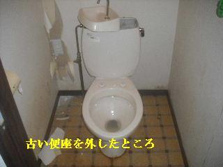 f0031037_2055932.jpg