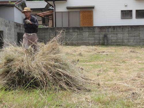 臨時活動:みさき公園団地出前草刈りー5_c0108460_14432763.jpg