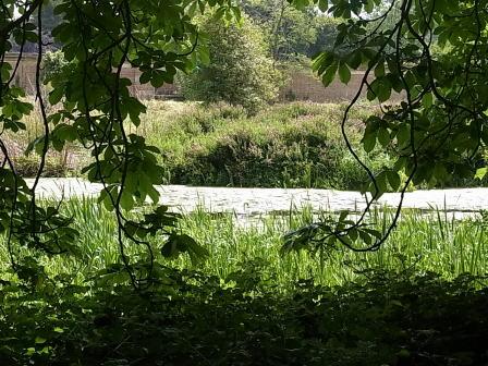 Hever Castle ガーデン......ウォーターメイズ_d0127182_179012.jpg