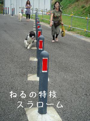 b0101991_7123062.jpg